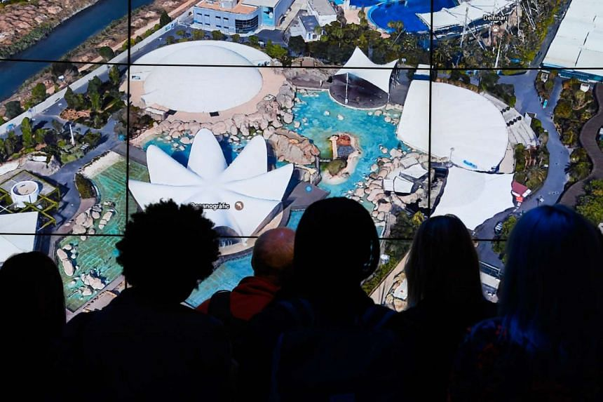 People look at Oceanografic Valencia Aquarium as Google Earth unveils a revamped version of the application.