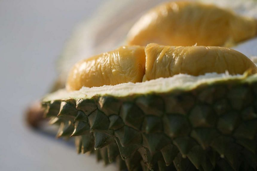 Kedai Ucok Durian Jakarta is set up by a reseller who buys durians directly from Ucok Durian Medan. PHOTO: ST FILE