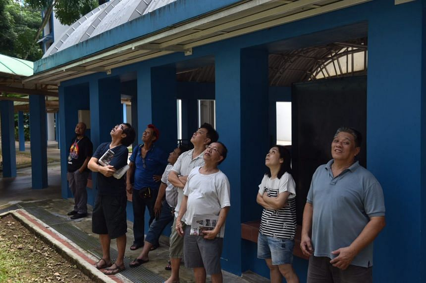 Residents watch as the authorities try to search out and capture a troop of long-tailed macaques at Segar Road in Bukit Panjang on April 20, 2017. There has been a spate of incidents in which monkeys harassed HDB residents.