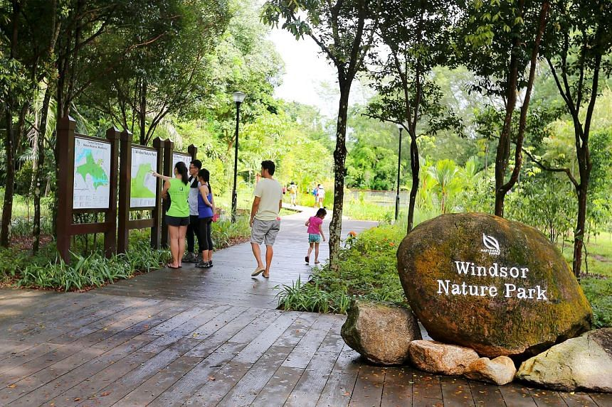 Windsor Nature Park features a 4m-high sub-canopy walkway that extends 150m, allowing visitors to see the fauna found above the ground. There are four trails, with one leading out to the TreeTop Walk.