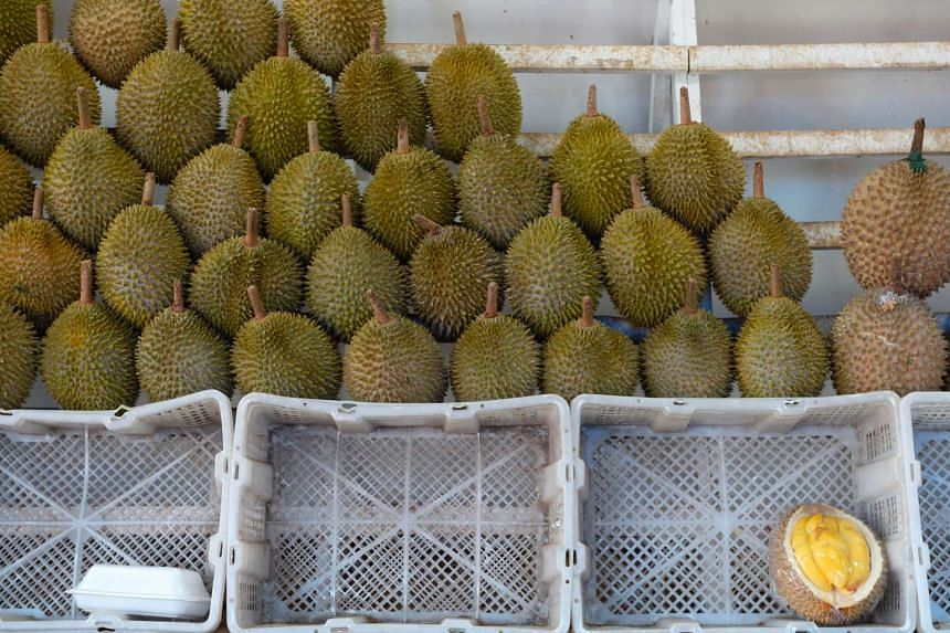 Thai officials intend to classify Phuket durian as a Geographical Indication (GI) product – items that have a specific geographical origin and possess qualities or a reputation that are due to that origin.