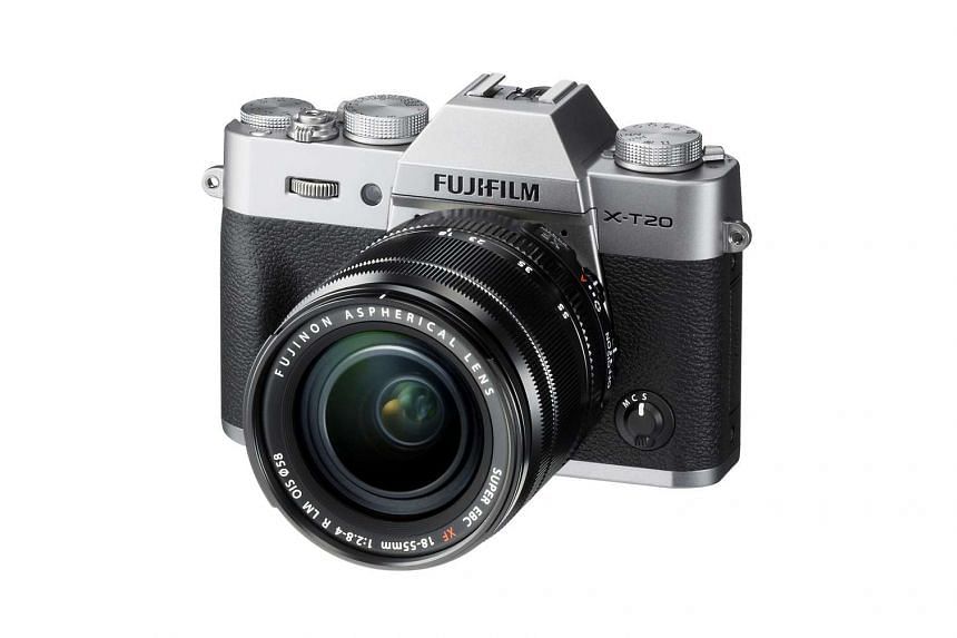 The Fujifilm X-T20's autofocus is almost instantaneous in locking onto a subject in bright sunlight.