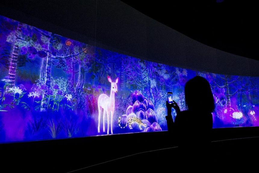 A digital interactive forest installation at The National Museum of Singapore