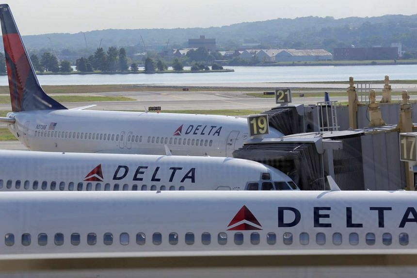 Delta Airlines planes are parked at gates at Ronald Reagan Washington National Airport.