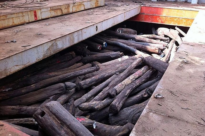 The rosewood logs seized in March 2014 were worth $70 million. The logs were imported by Singaporean Wong Wee Keong and his firm Kong Hoo from Madagascar without a permit.