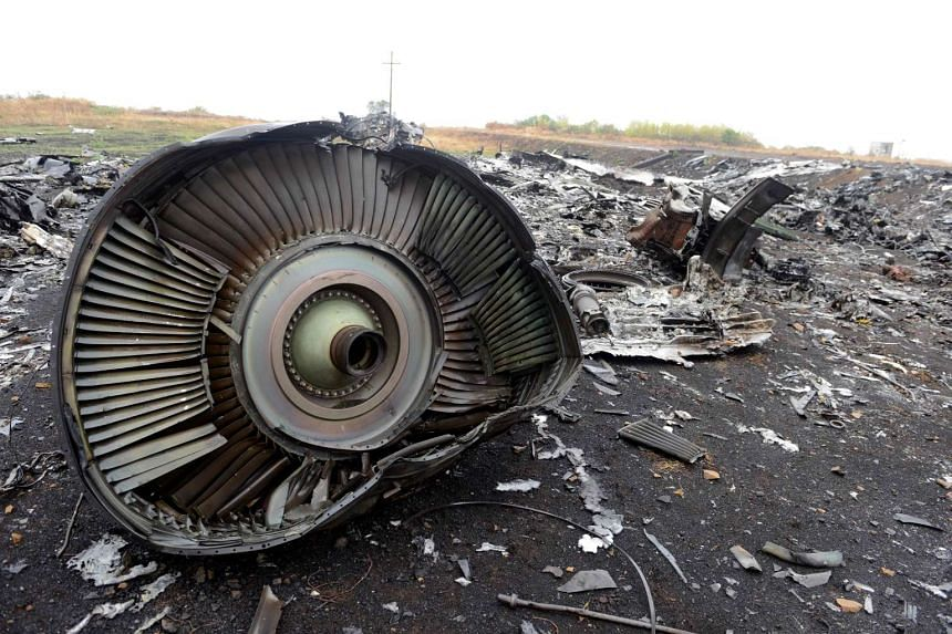 This file photo taken on Sept 9, 2014 shows the engine of the Malaysia Airlines Flight MH17's Boeing 777 at the crash site in the village of Hrabove.