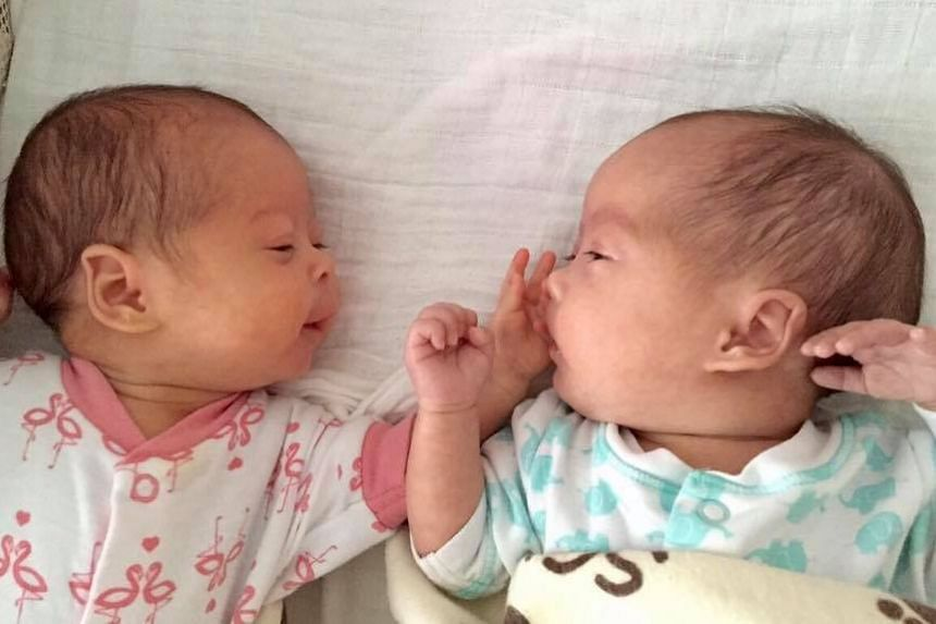 Katie Ng (Left) reaching out and trying to touch her sister Poppy on May 5, 2017.