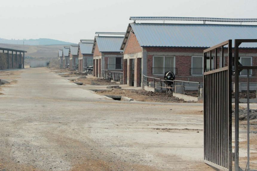 Cow farm houses of Huishan Dairy are seen in Shenyang, Liaoning province, China.
