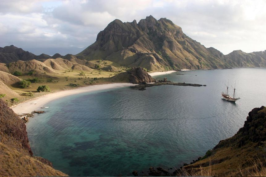 The best - actually the only - place in the world to see Komodo dragons in their natural habitat is in the Komodo National Park in Indonesia. It is made of over 20 islands spread over an area of 1,733 sq km, and the only way to get there is by boat.