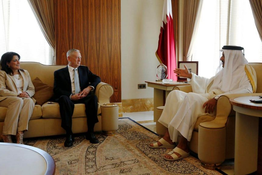 US Ambassador to Qatar Dana Shell Smith (pictured with Qatar's Emir Sheikh Tamim bin Hamad al-Thani and US Defence Secretary James Mattis) took to Twitter to express her dissatisfaction at recent political events in the US.
