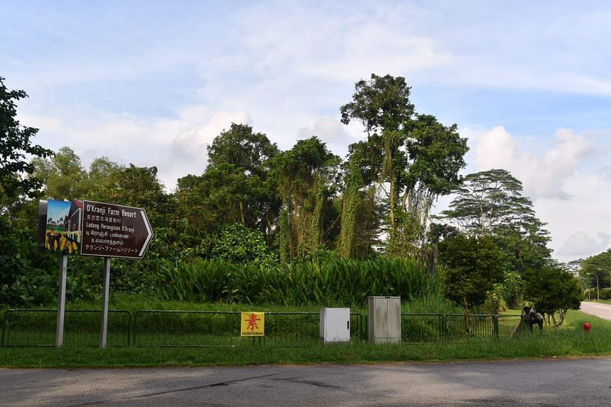 A view of a plot of land at the junction of Neo Tiew Lane 2 and Neo Tiew Road.