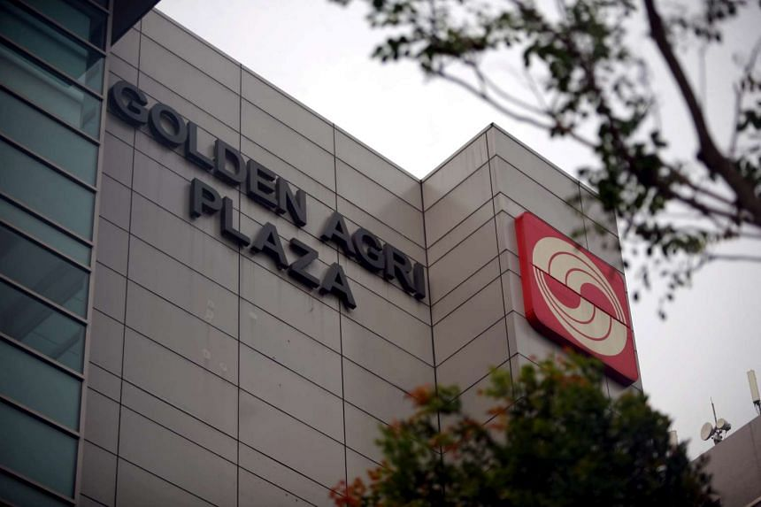 Golden Agri's first-quarter revenue jumped 37 per cent to US$2.05 billion, but net profit for the three months to Mar 31 came in at US$37.6 million.
