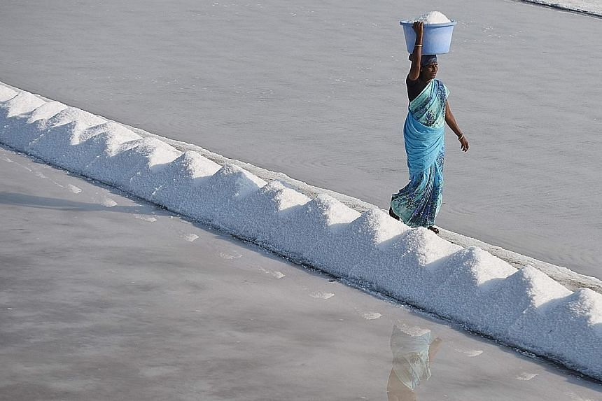Indian labourer Thangam carries a basket of salt as she works on a salt pan at Thoothukudi, some 16km south of Madurai in Tamil Nadu, where labourers earn an average of 290 rupees (S$6.30) per day.