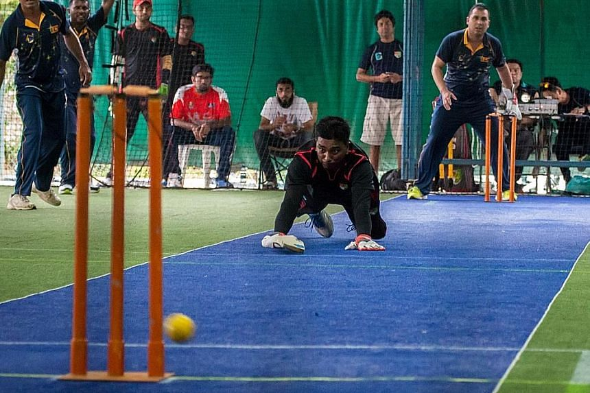 Singapore national Open team captain Rajiv Chandrasekar diving in a bid to escape a run out against the Sri Lanka All-Stars. The Singapore cricketers earned praised from their opponents for giving them a tough fight.