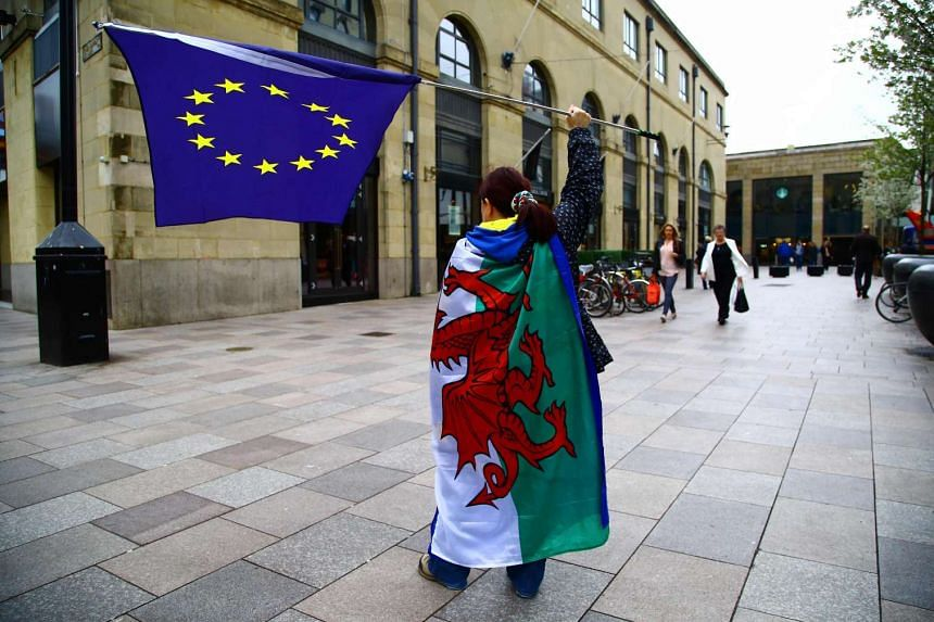 Demonstrators wave an EU flag while draped in the national flag of Wales in Cardiff. PHOTO: AFP