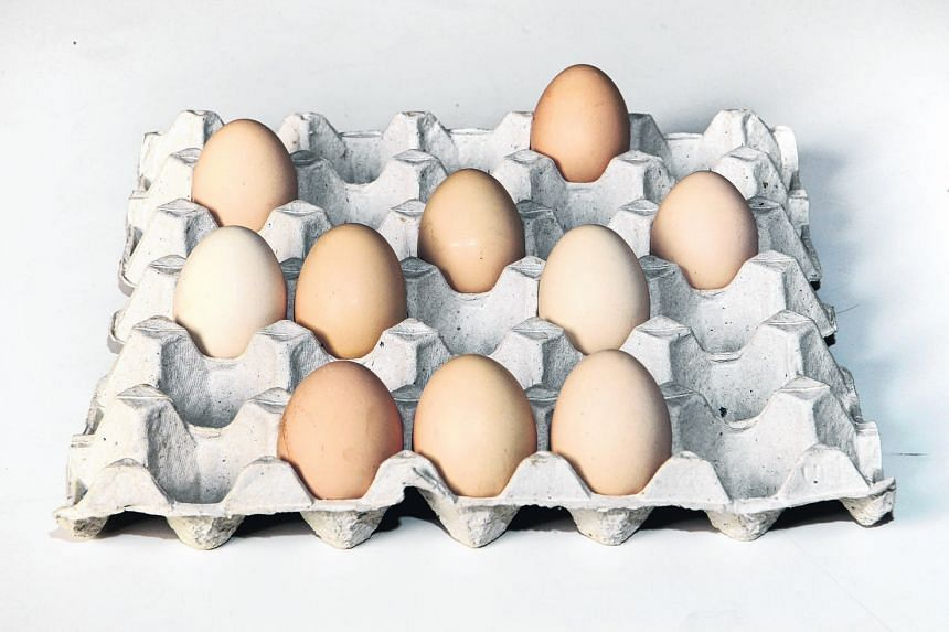 Eggs are a good source of protein and other nutrients.