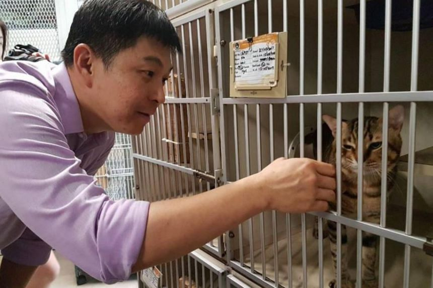 Minister for Social and Family Development Tan Chuan-Jin at SPCA's Animal Welfare Youth Leadership Camp.
