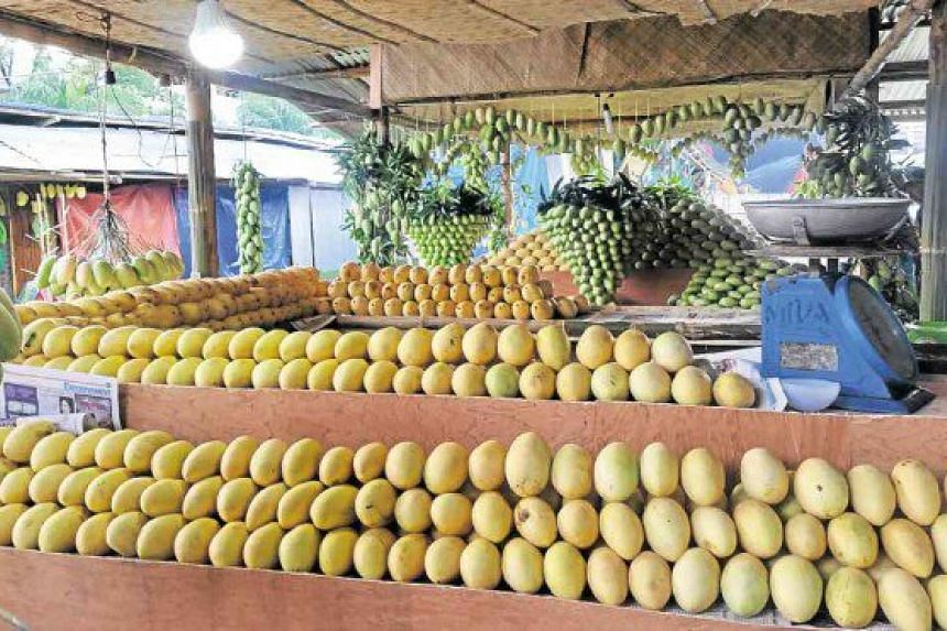 Guimaras in the Philippines is an island province known for its bountiful, golden sweet mangoes. PHOTO: THE PHILIPPINE INQUIRER