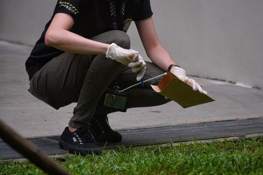 Police are seen picking out cable ties from the drain.