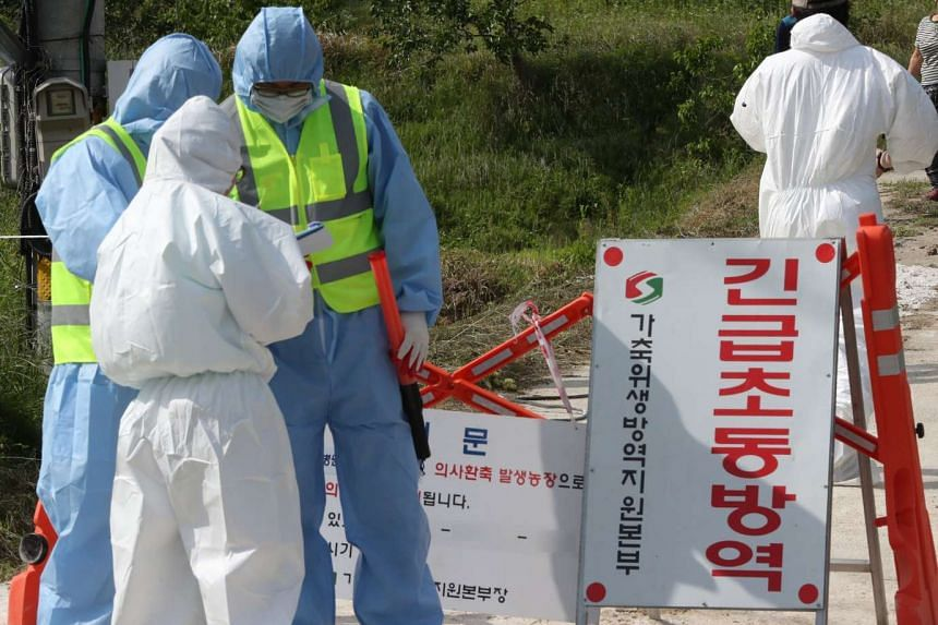 Health authorities quarantine a chicken farm after a suspected case of avian influenza was reported, in Gunsan, North Jeolla Province, South Korea, on June 3, 2017.