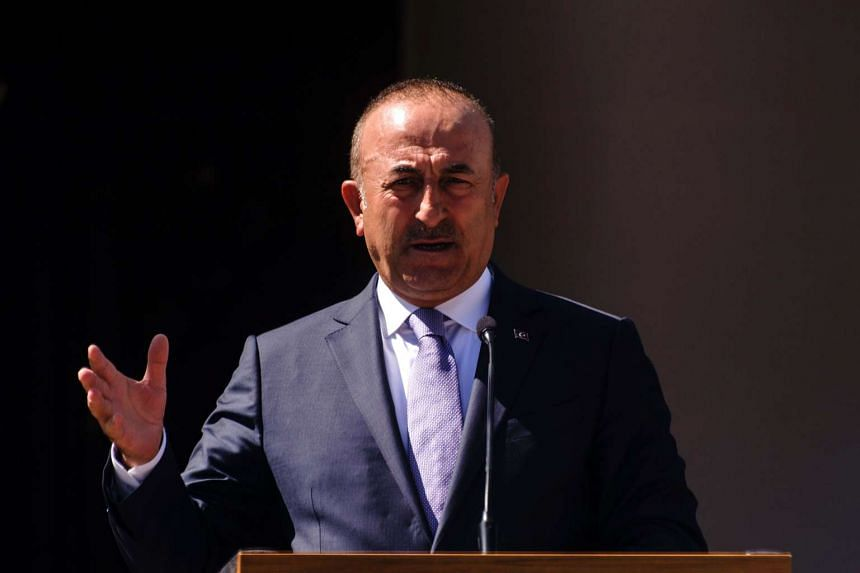 Turkish Foreign Minister Mevlut Cavusoglu speaks during a joint press conference with Turkish Cypriot leader Mustafa Akinci after a meeting on June 1, 2017.