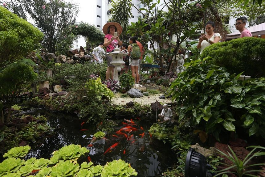 Visitors taking photos of a koi pond in a community garden in Bukit Batok Central.