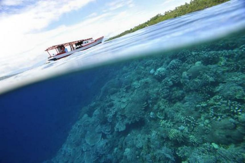 Coral reefs at Indonesia's protected Bunaken Island marine national park on May 14, 2009.
