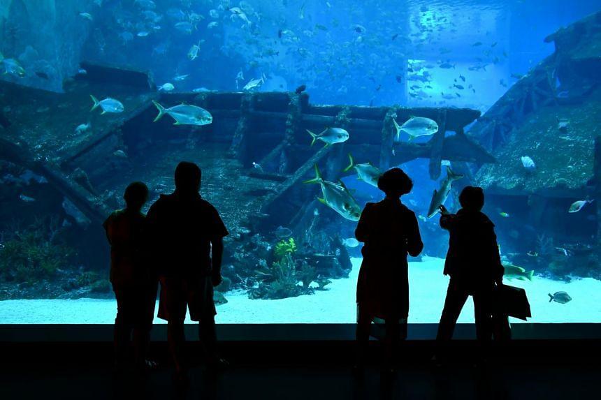 The SEA Aquarium Society is a conservation arm of the SEA Aquarium at Resorts World Sentosa.