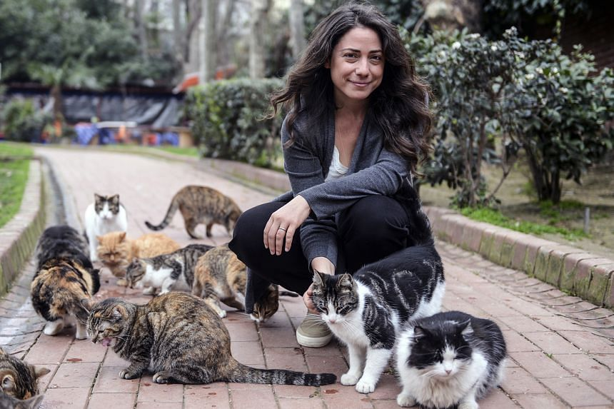Los Angeles-based Ceyda Torun says stray cats were her best friends while she was growing up in Istanbul.
