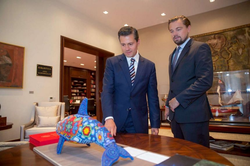 DiCaprio (right) meeting Mexican President Enrique Pena Nieto on June 7, 2017.