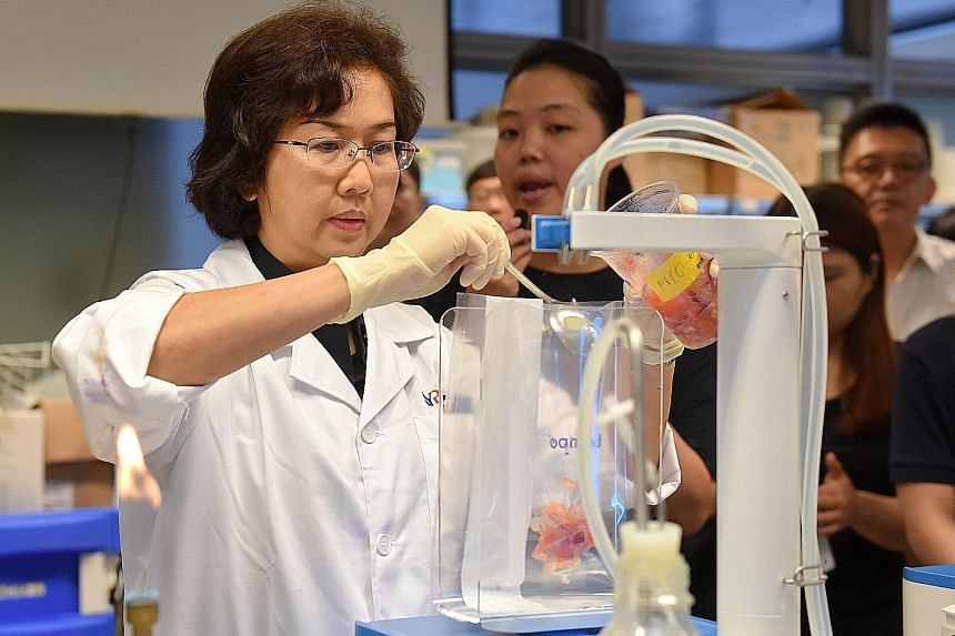 Ms Irene Chan, 50, a quality manager at the Nanyang Polytechnic (NYP)-bioMerieux Food Microbiology Rapid Testing Centre, demonstrating how to test a food sample for micro-organisms such as yeast or E.coli.