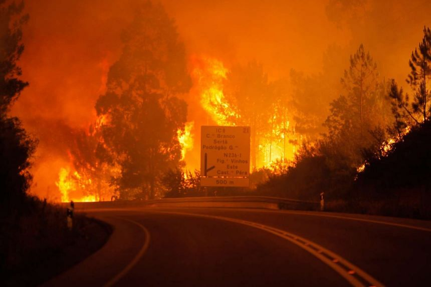Flames rising during a forest fire in Pedrogao Grande, Leiria district, Portugal, on June 17, 2017.