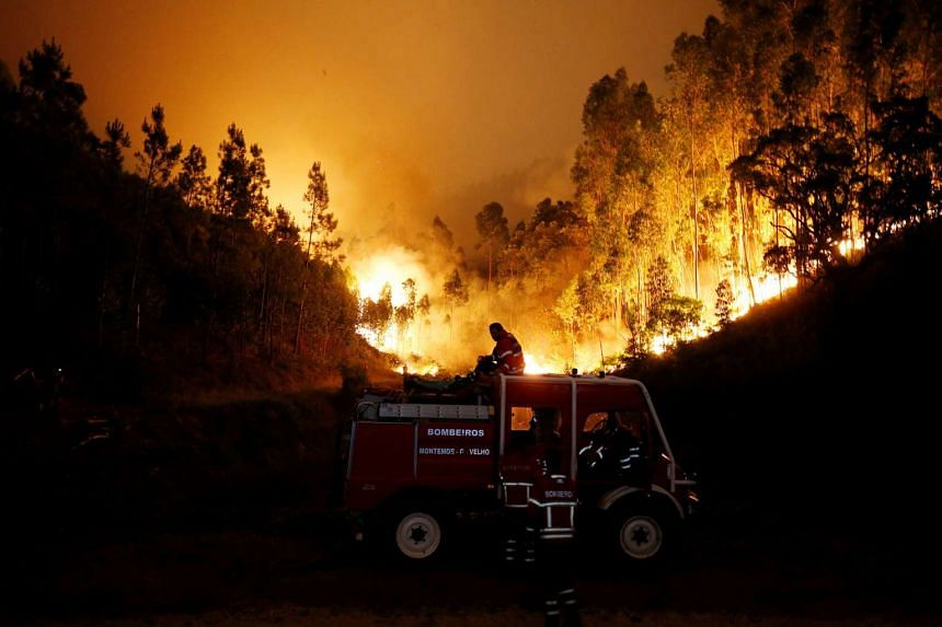 Firefighters working to put out a forest fire near Bouca, in central Portugal, on June 18, 2017.