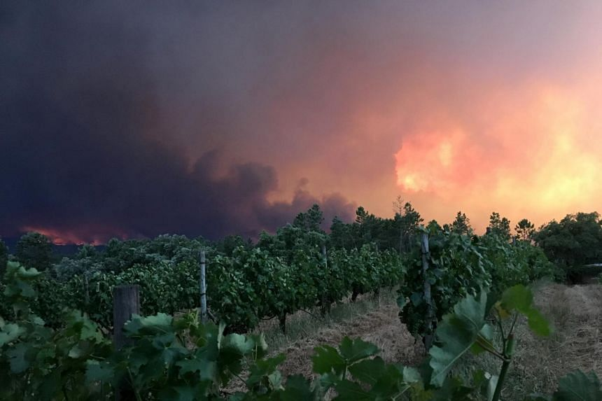 Smoke rises from a forest fire, seen from the village of Mourisco in central Portugal.