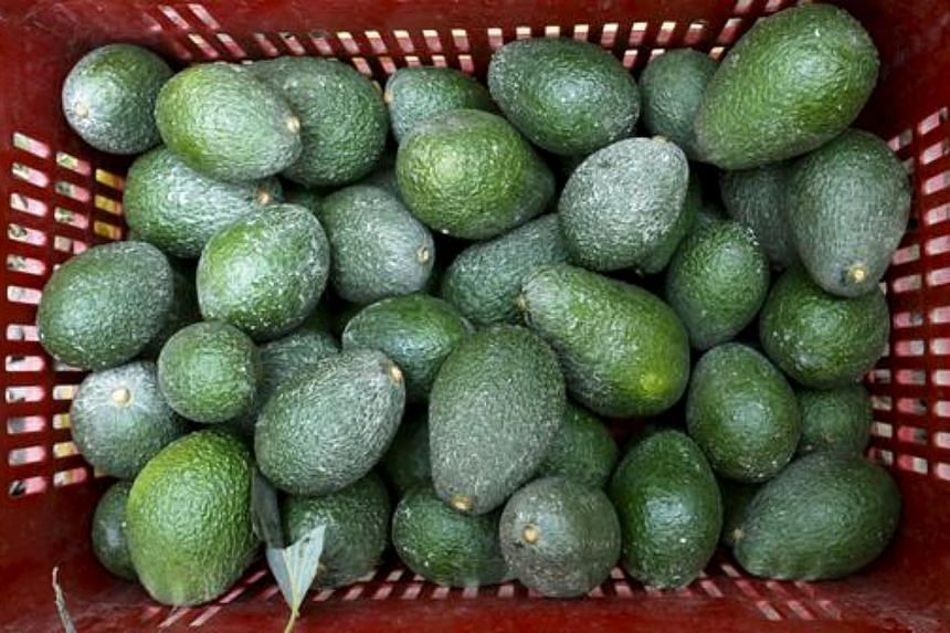 Police in Ventura County, California, have arrested three men for the theft of US$300,000 (S$415,260) worth of avocados from a produce firm where they worked.