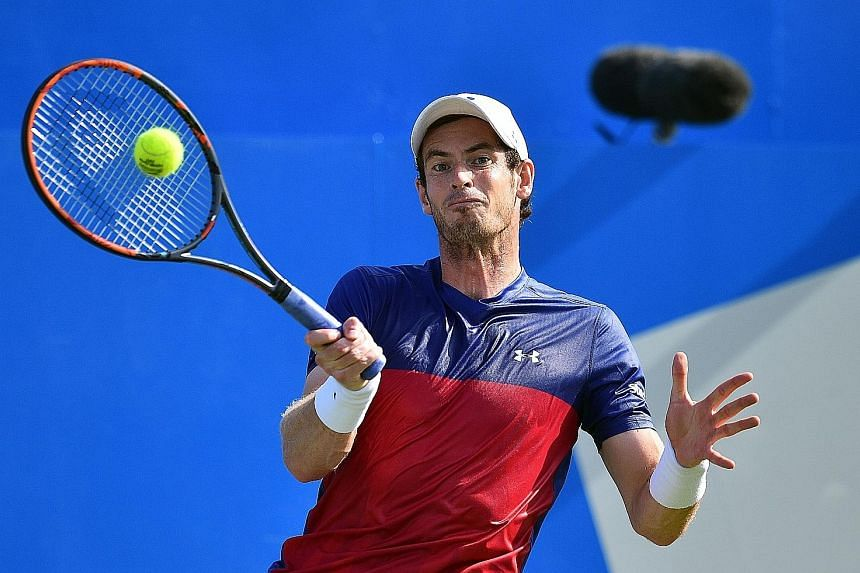 Scot Andy Murray (above) returning against Australia's Jordan Thompson during their first-round match at Queen's. The world No. 90 and lucky loser celebrating after claiming the biggest scalp of his career in the world No. 1.