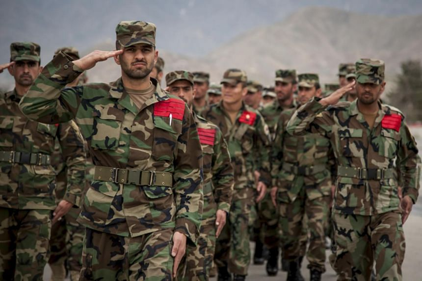 The Pentagon recently paid for a new proprietary camouflage that was inappropriate for the environment based on a single Afghan official's tastes, a government watchdog said.