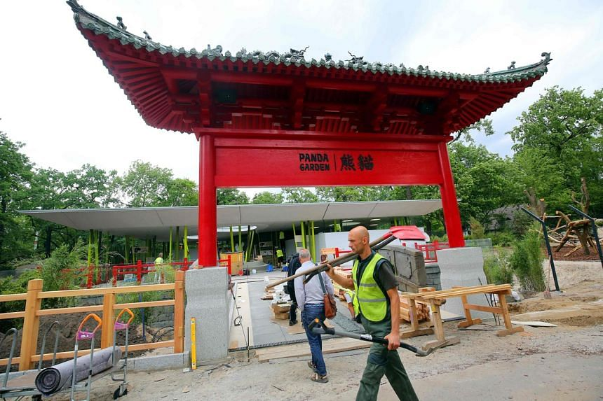 Construction works are under way at the new panda enclosure of Berlin's Zoologischer Garten zoo on June 13, 2017 to prepare the arrival of pandas Meng Meng and Jiao Qing from China.