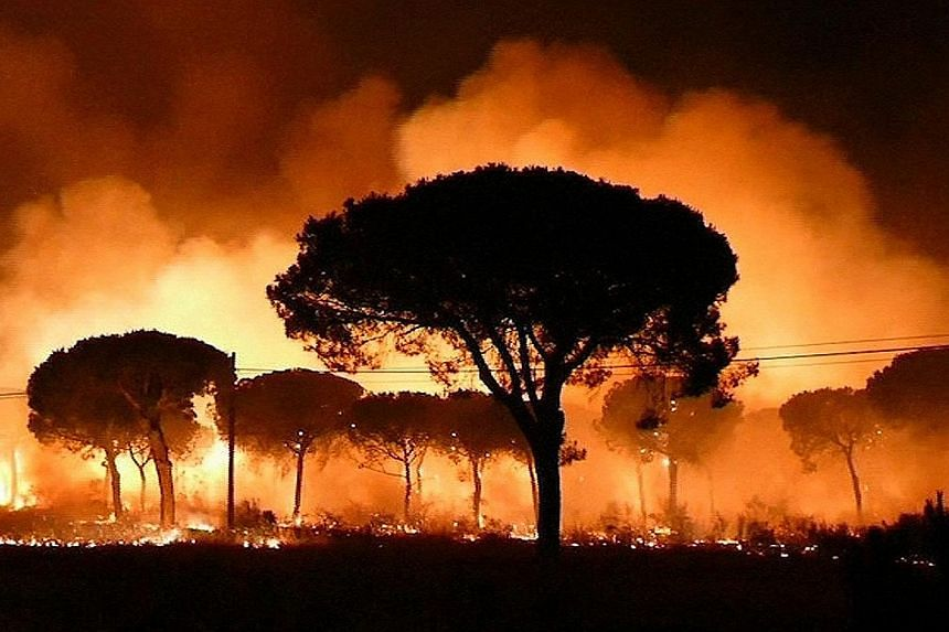 Spanish firefighters and emergency services are fighting a blaze that broke out on Saturday night near the famed Donana nature reserve in Andalusia.