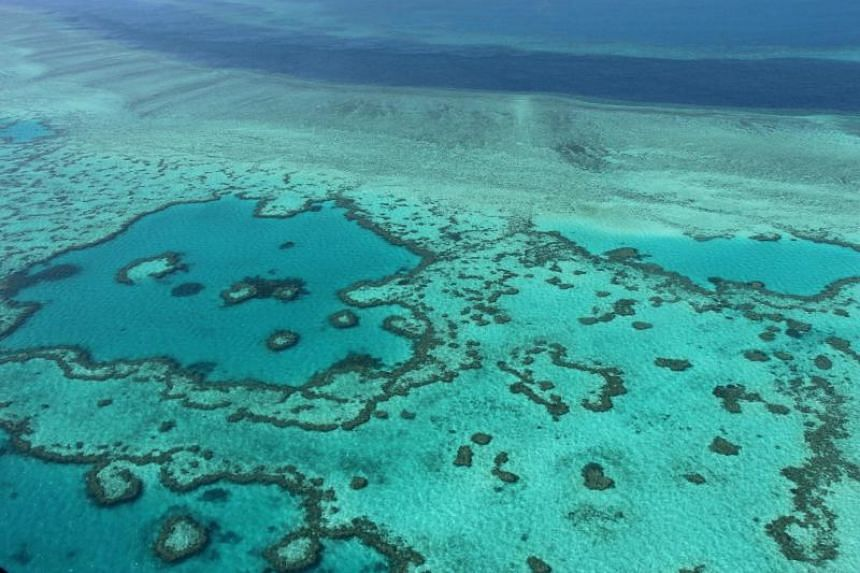 An aerial view of the Great Barrier Reef off the coast of the Whitsunday Islands, along the central coast of Queensland, Australia.