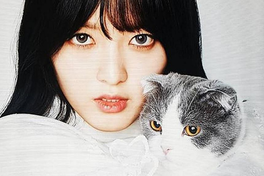 Chanmi, from girl group AOA, can dance, sing - and act. On Tuesday, the 21-year-old won an acting contest that pitted South Korea's idol singers against one another. In the final episode of I'm An Actor that was aired on cable channel K Star, she cli