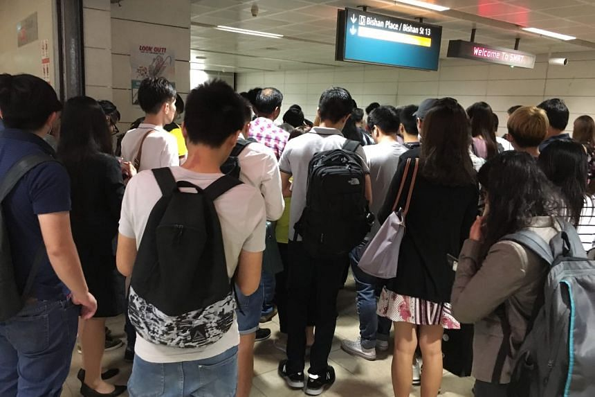 Photo of the crowd at Bishan MRT Station on June 29