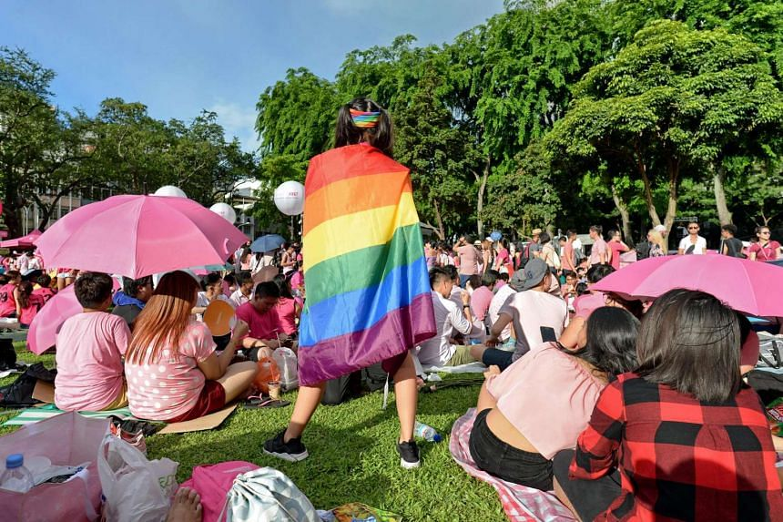 A supporter wrapped in a rainbow flag attends the annual Pink Dot event at Hong Lim Park in Singapore on July 1, 2017.