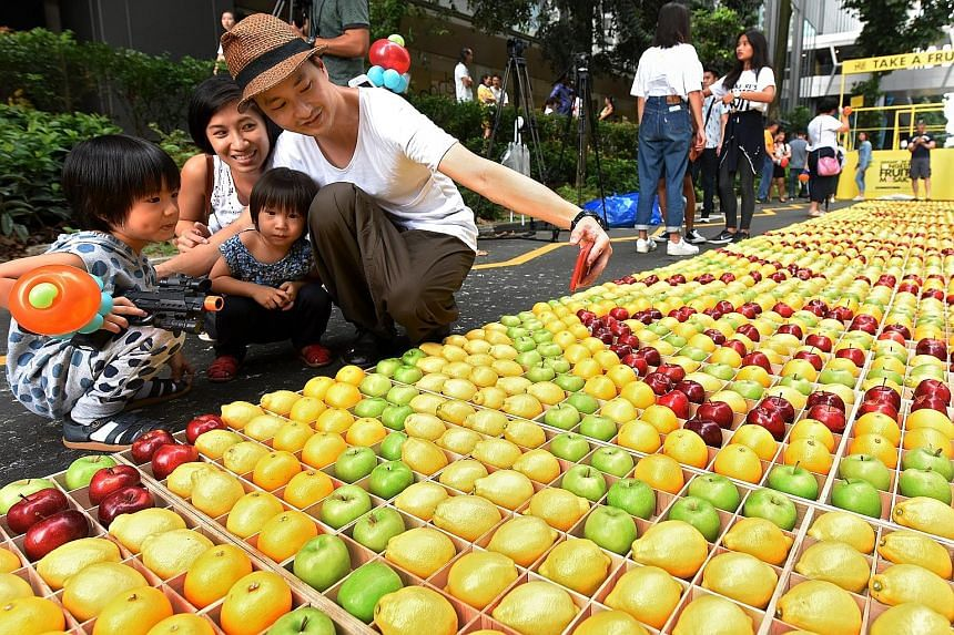 Mr Aries Satria with his wife Indri Seribuana and sons Christopher (in polka-dotted outfit) and Jonathan posing with Singapore's longest fruit mosaic, measuring 1.5m by 200m. It was completed on Sunday to mark International Fruit Day. The installatio