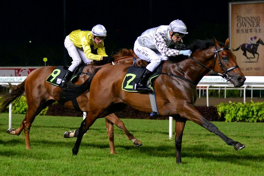 Racehorse Alibi in action at Kranji on April 15, 2016.
