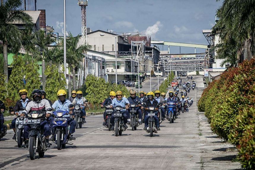 Efforts by companies such as Asia Pulp and Paper have helped to improve the air quality in Pekanbaru and other states.