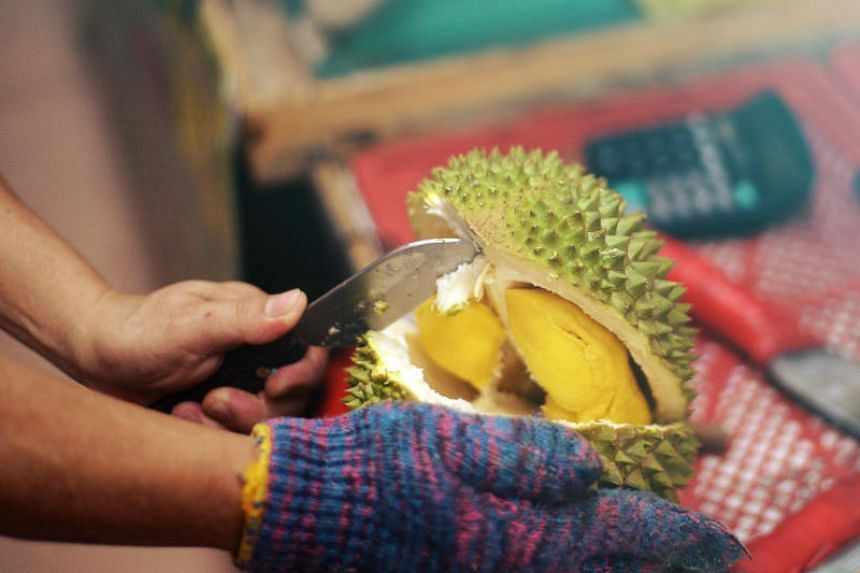 The main durian season in Singapore is typically from to June to September every year.