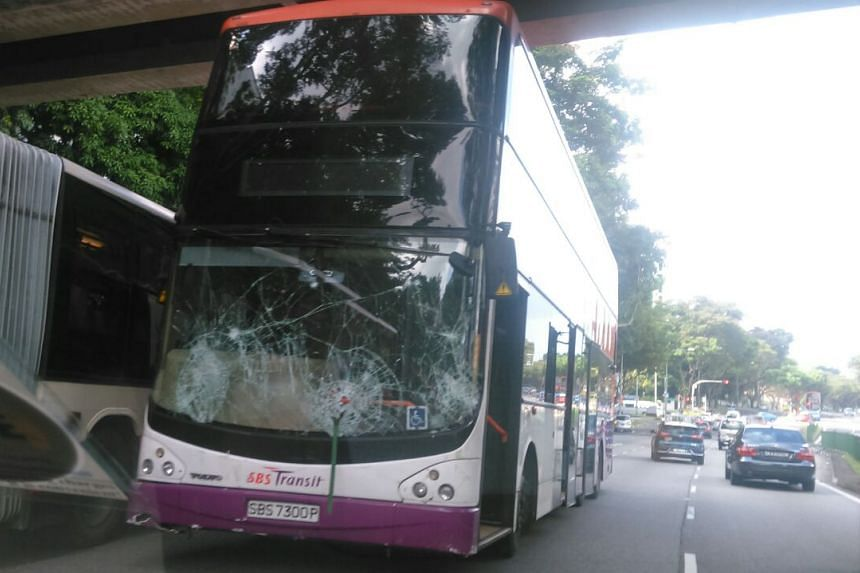 The windscreen of the bus was cracked after the incident.
