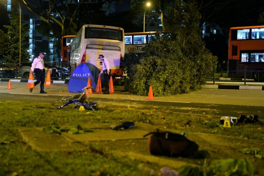 The scene in which female cyclist  Madam Wong Lai Cheng died in an accident at Pioneer Road North, on Jan 12, 2017.