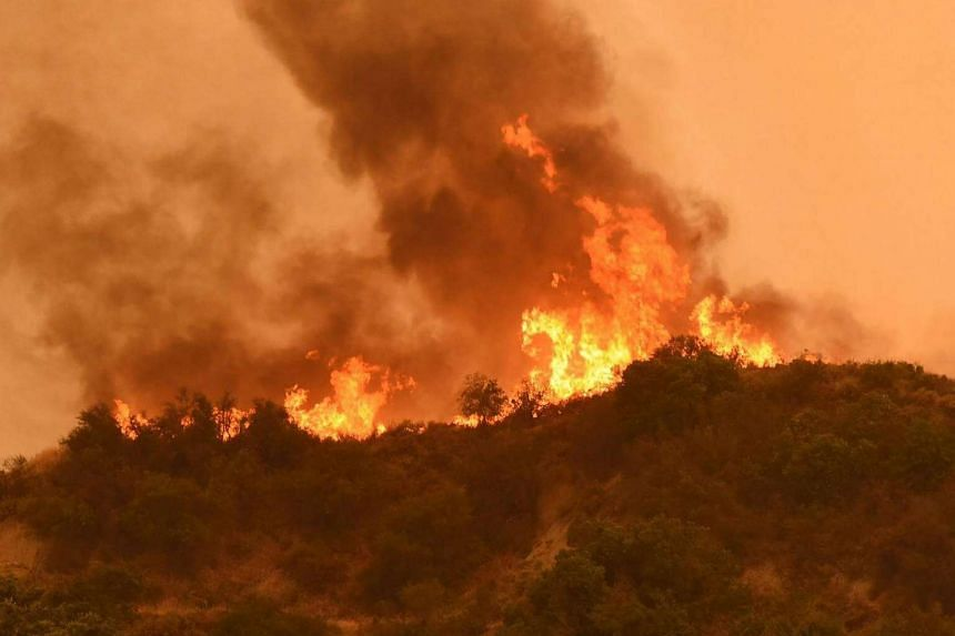 Flames near Cachuma Lake and Highway 154 in Los Padres National Forest on July 8, 2017.